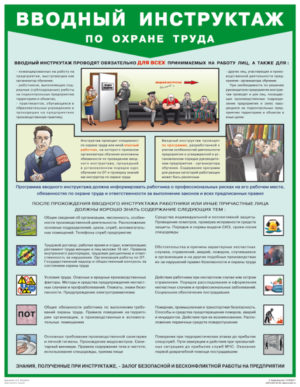 """Вводный инструктаж по охране труда"" - плакат (465 х 600 мм)"